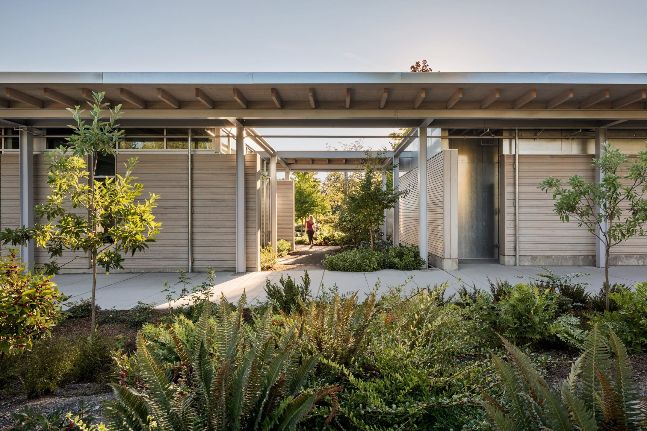 Olson Kundig — Bellevue Botanical Garden Visitor Center ...