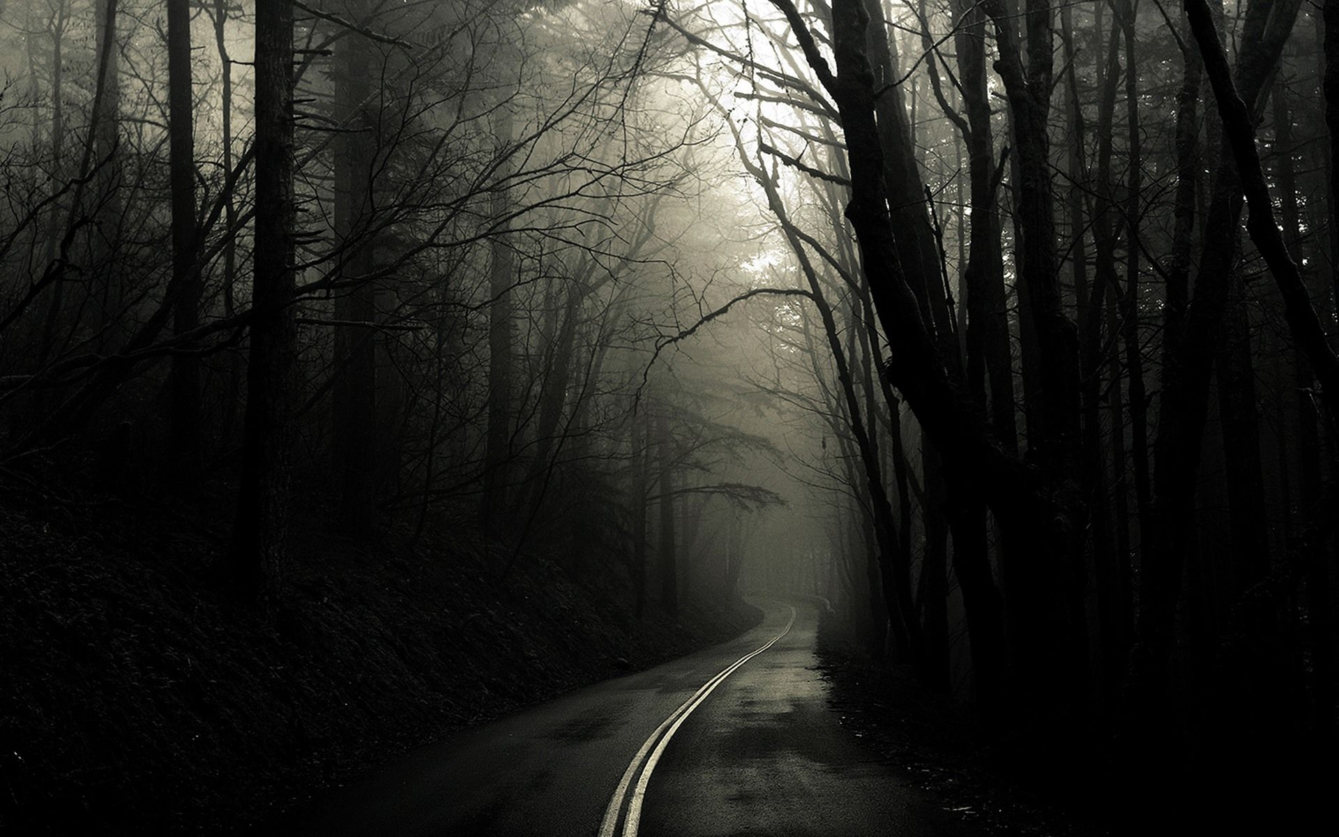 Eerie Scenery High Quality 1920x1200 Scary Road