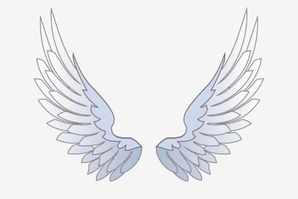 White Wings Swan Wings Beautiful Wings Cartoon Illustration Vector And Png Angel Wings Illustration Wings Drawing Cartoon Wings