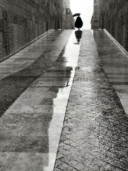 Rui PALHA :: Untitled from Rainy Days Gallery, 2009