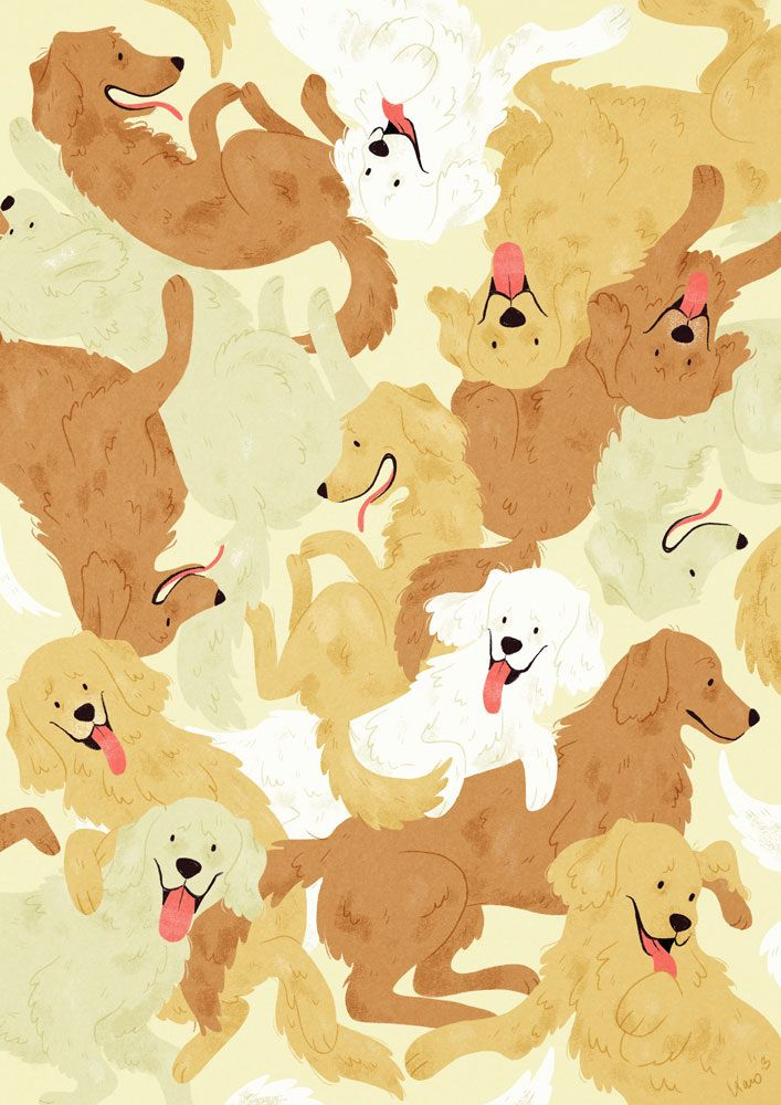 golden retriever karoline pietrowski illustration