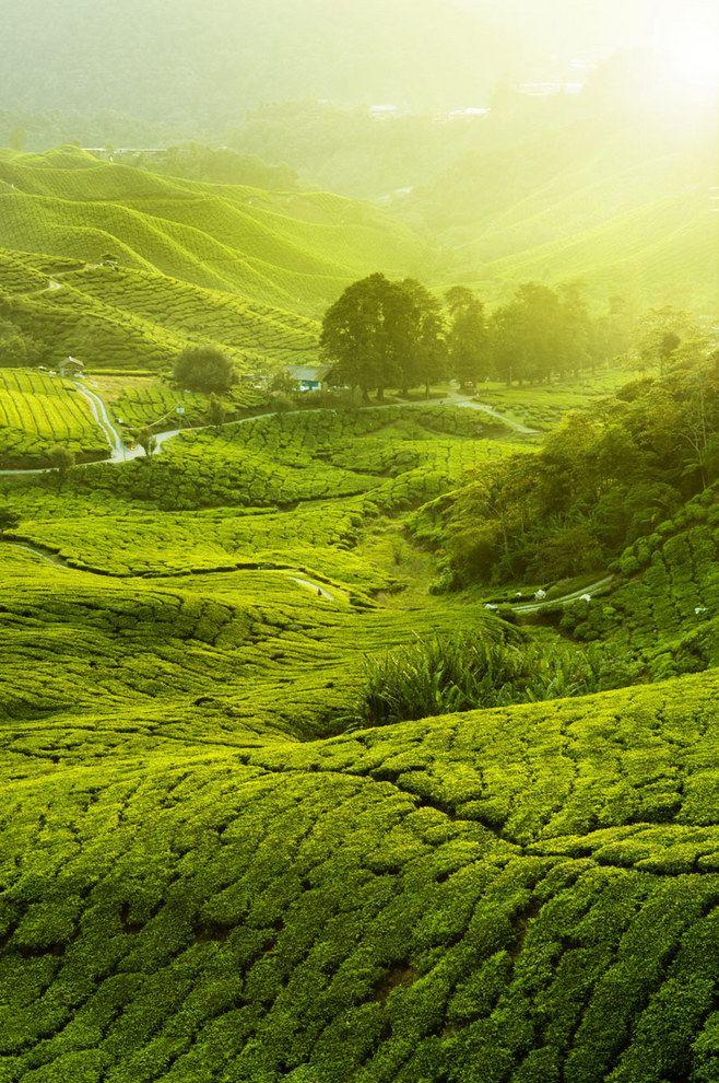 (800×1204) Landscape scenery, Landscape, Hd picture
