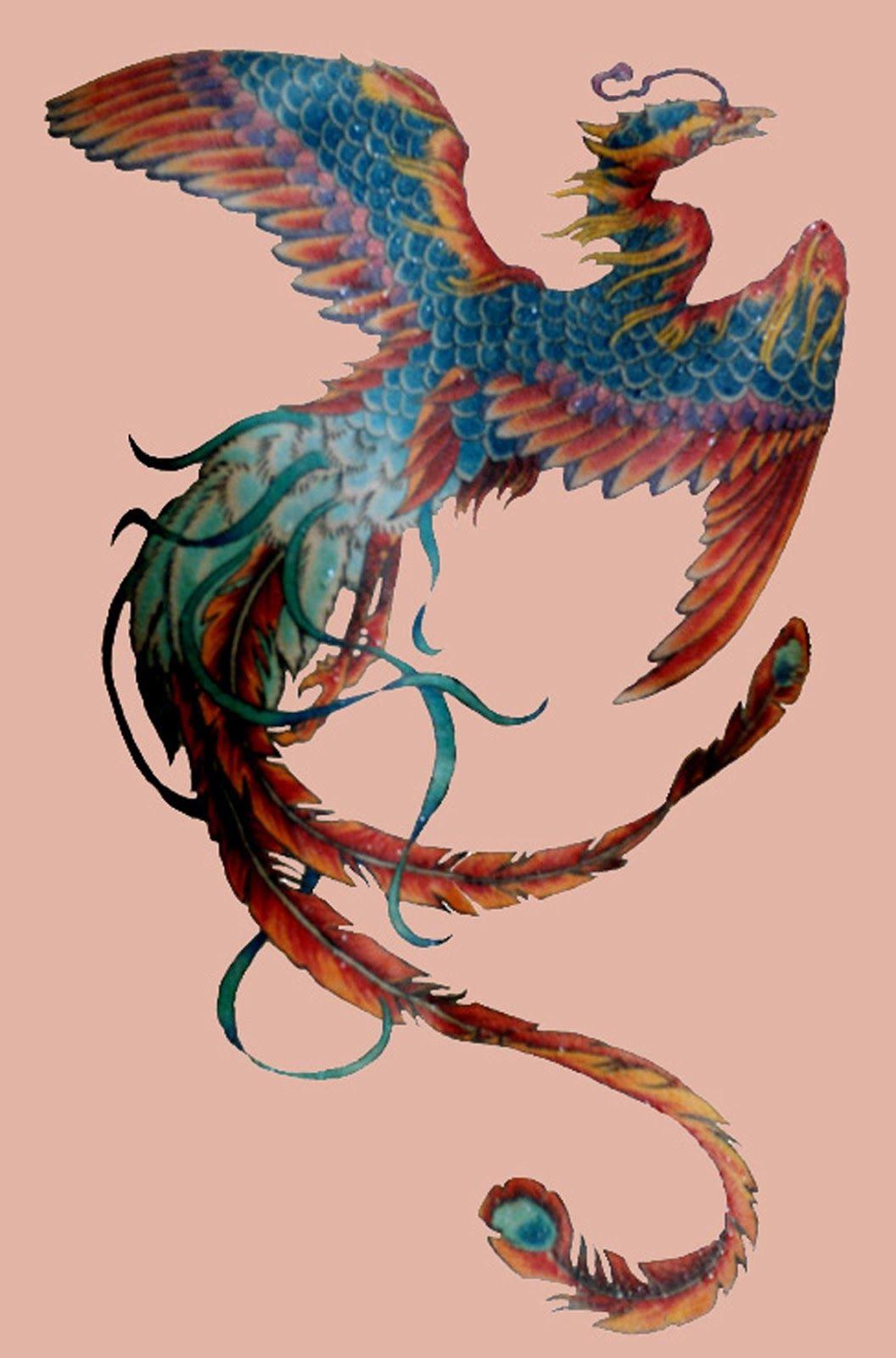 Phoenix Tattoo Google Search Phoenix Bird Art Phoenix Bird Phoenix Bird Tattoos