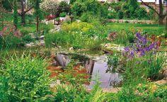 8 Tipps für mehr Freude am Gartenteich -  Bei der Anlage ihres Gartenteichs machen leider viele Hobbygärtner Fehler, die sich im Nachhinein nur mit großem Aufwand korrigieren lassen. Mit diesen 8 Tipps umgehen Sie die größten Fallstricke.