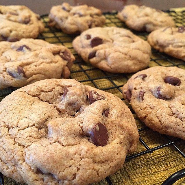 Matt S Chocolate Chip Cookies Chocolate Chip Cookies Homemade Cookies Chocolate Chip
