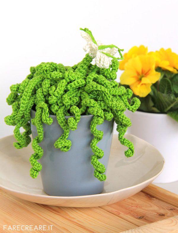 Piante Grasse Uncinetto Schema Facile Per Iniziare Con Gli Amigurumi Modelli Di Fiori All Uncinetto Cactus All Uncinetto Piante Grasse