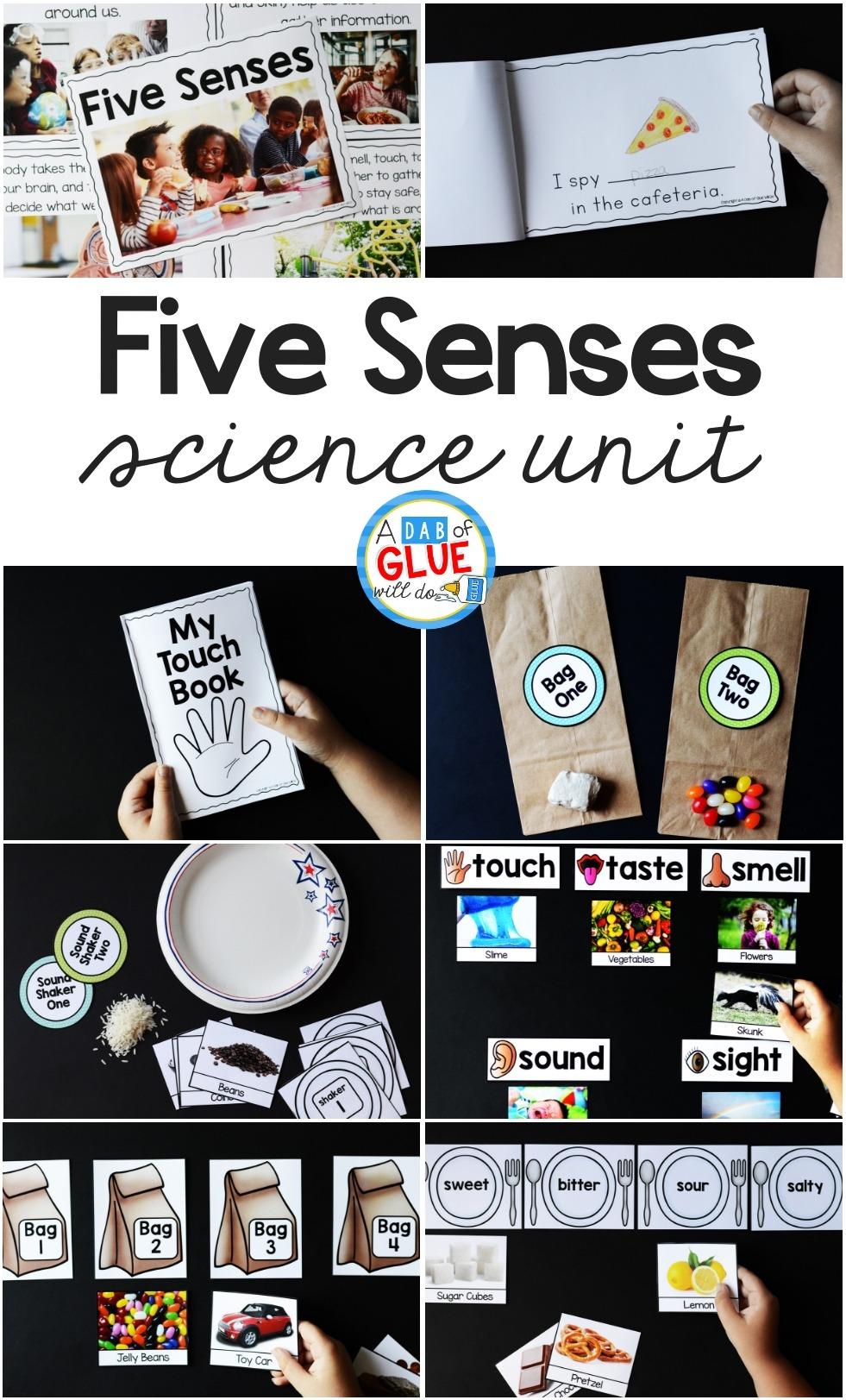 Five Senses Kindergarten Activities Senses Preschool Five Senses Preschool [ 1623 x 981 Pixel ]