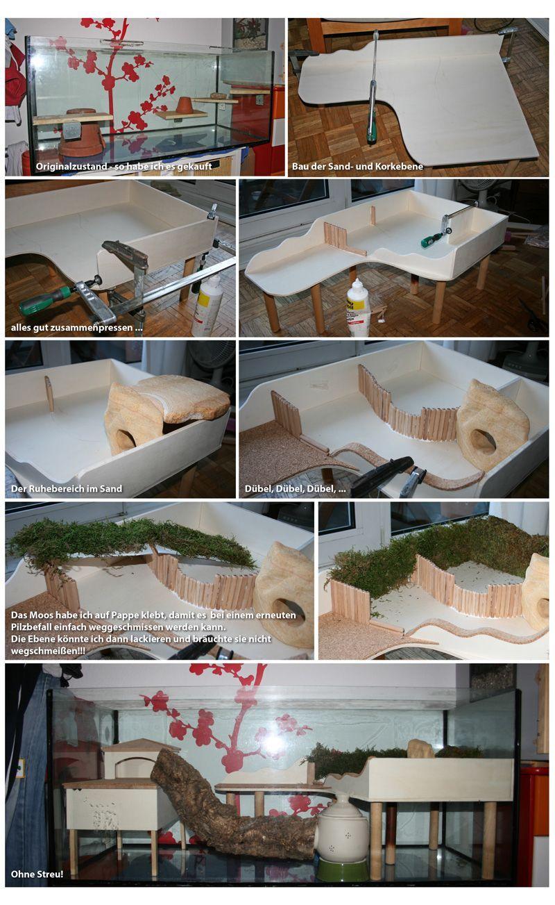 Hier Wohnt Jetzt Nando 120x50x50 Das Hamsterforum Hier Wohnt Jetzt Nando 120x50x5 In 2020 Hamster Ideen Hamster Hamster Spielzeug