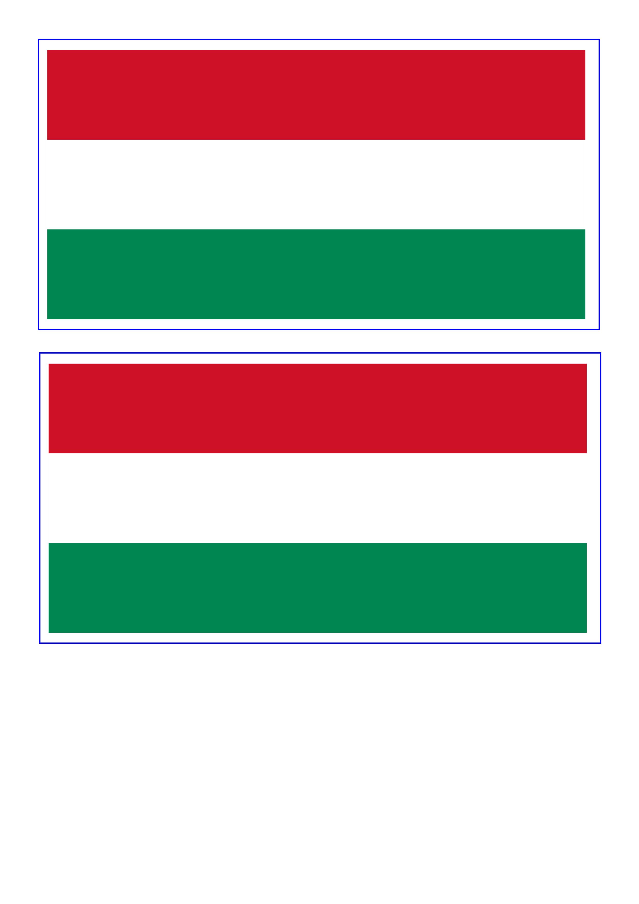Hungary Flag Free Printable Hungary Flag Flag Template Hungary Flag Flag Printable