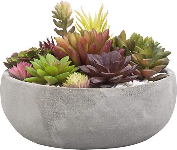 Amazon Com Mygift 8 Inch Decorative Round Grey Cement Succulent Planter Garden Outdoor In 2020 Succulent Planter Succulents Ceramic Succulent Planter