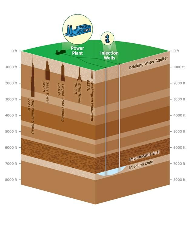 Carbon Sequestration  This Shows How The Process Of Carbon