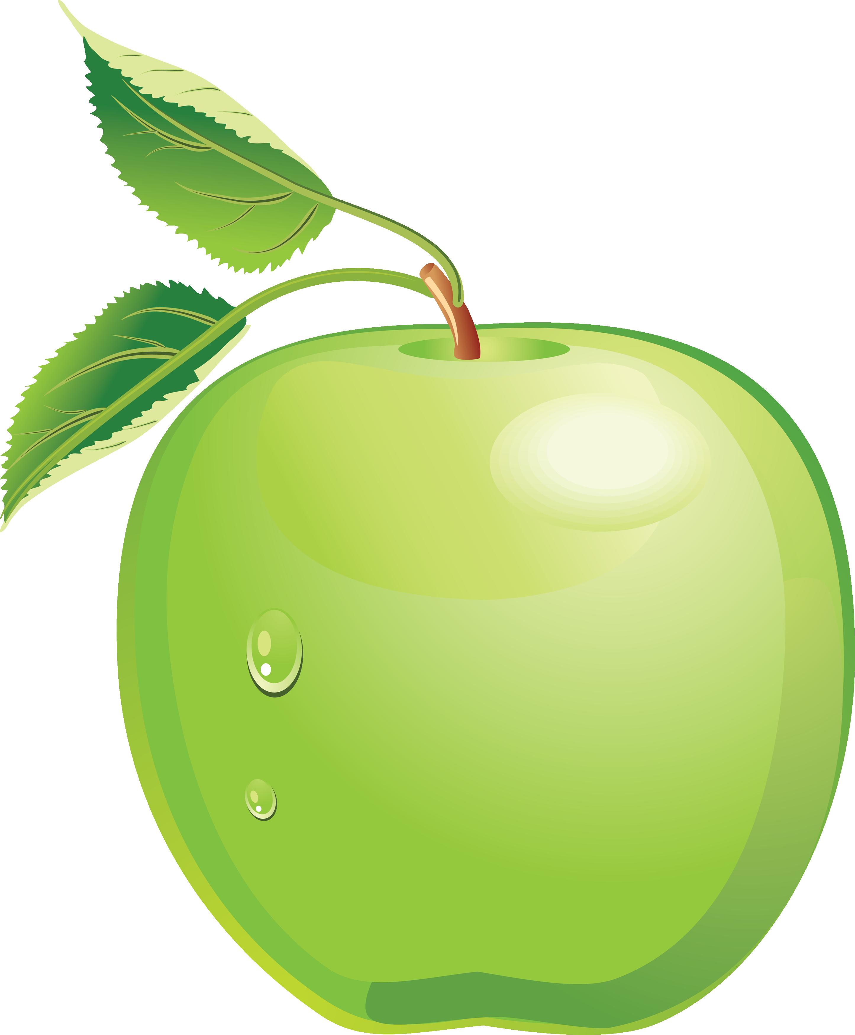 Transparency Apple Transparent Image Green Apple Fruit Cartoon Fruits Drawing