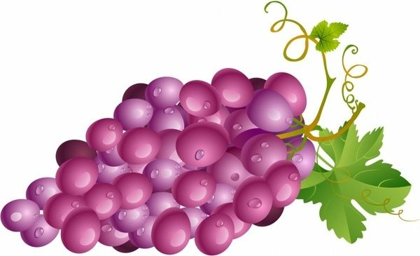 Red Grape Grapes Vector Free Leaves Vector