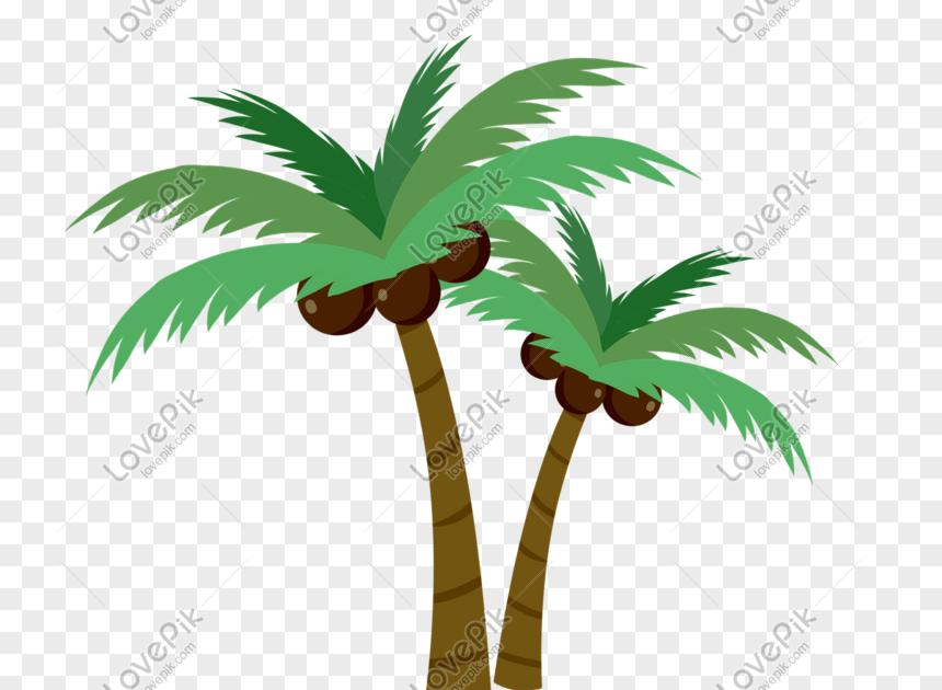 Paling Keren 30 Gambar Pohon Kelapa Kartun Di Pantai Gaya Pokok Kelapa Kartun Yang Rata Gambar Unduh Gratis Imej Download Gambar Menggambar Pohon Di Pantai