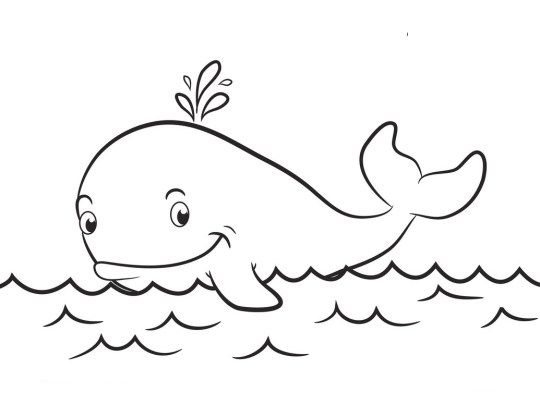 - Whale Coloring Pages Draw Coloring Pages Faaliyetler, Resim, Dekor