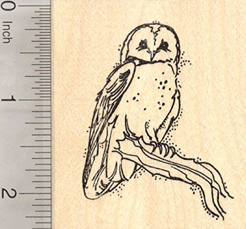 Barn Owl Rubber Stamp Perched on Branch ** You can find out more details at the link of the image.