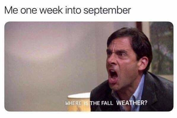 Pin By Victoria On Thoughts Of Autumn In 2020 Really Funny Memes Funny Relatable Memes Stupid Funny Memes