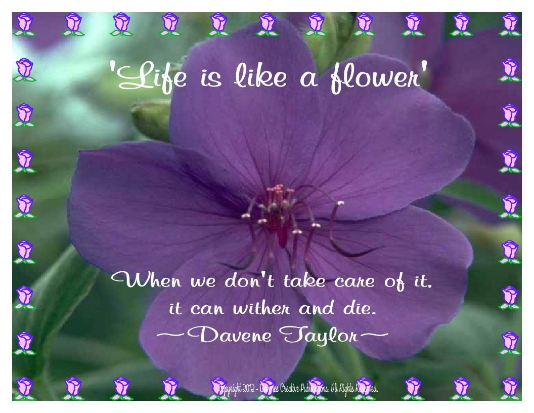 Life Is Like A Flower Inspirational Pinterest Flower Quotes