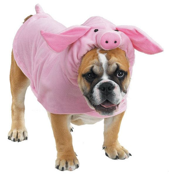Pink Pig Costume For Dogs Piglet Halloween Dog Costume Pampered