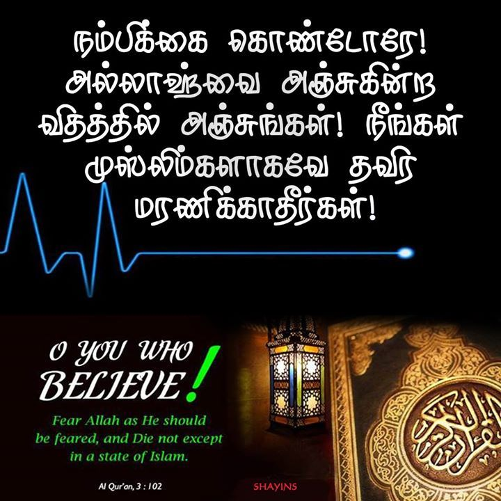 Tamil Muslim Imaan Quotes: Pin By Akbar Official On Tamil Vedas அறிவு வேதம் Quran