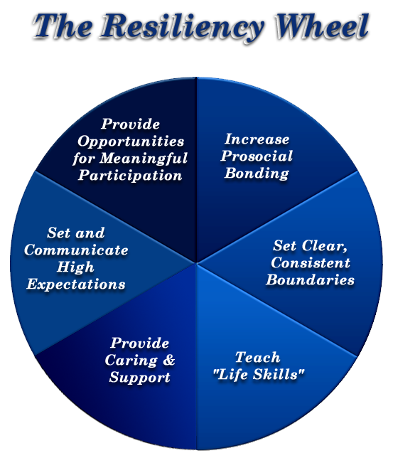 Resiliency Wheel Helpful for crisis intervention