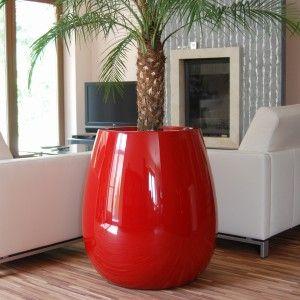 33++ Grand pot pour palmier exterieur ideas