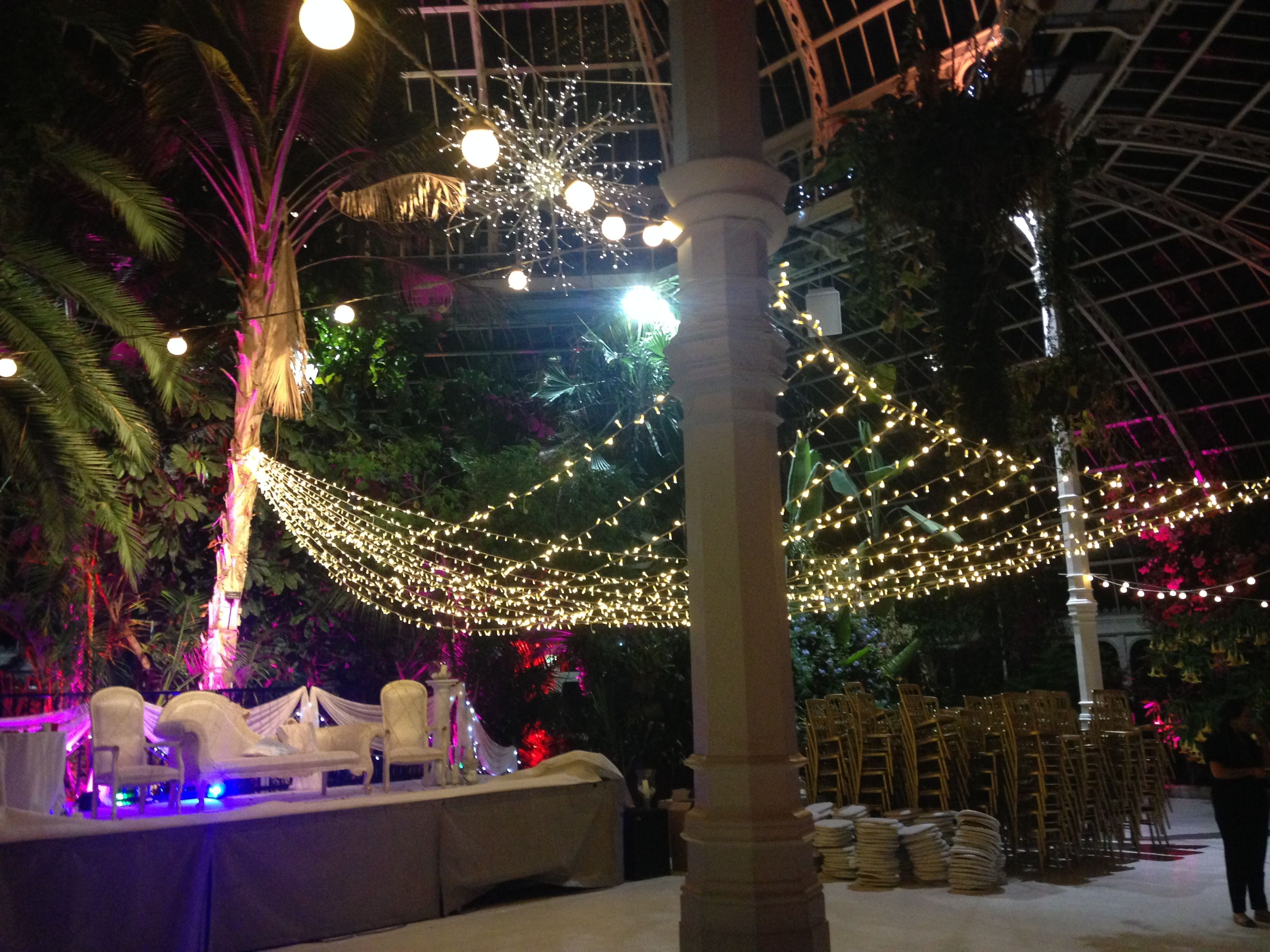 Warm White Fairy Light Canopy For Indian Wedding At Sefton Park Palm House Liverpool