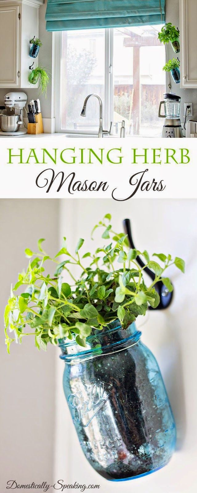 Great Hanging Fresh Herbs In Blue And Green Mason Jars   Perfect Way To Have An  Indoor Herb Garden In Your Kitchen!