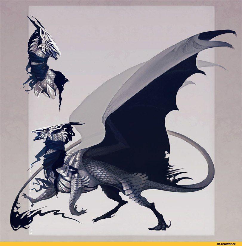 Игры,Dark Souls,фэндомы,DS art,Artorias The Abysswalker,DS персонажи,Dragon slayer Ornstein