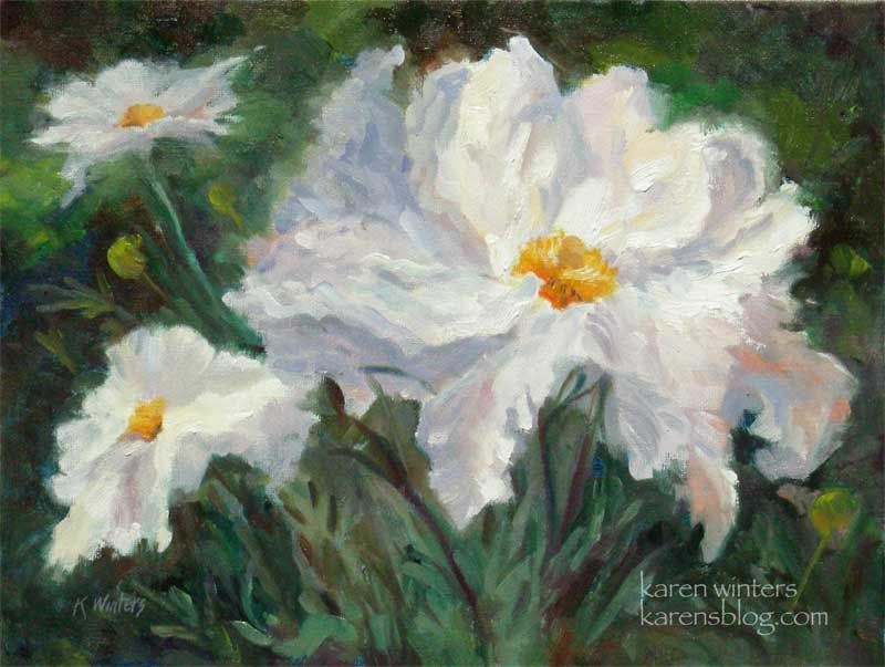 Images of flower painting fried egg plant white flower images of flower painting fried egg plant white flower california native plant mightylinksfo Images