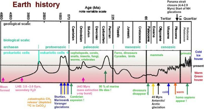 timeline humans on earth - Google Search | bits & bobs | Pinterest ...