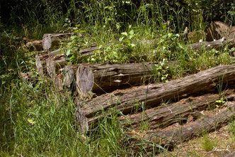 Holzstapel Sind Eine Einfache Methode Um Grossere Mengen Totholz Im Garten Zu Arrangieren Ohne Das Ordnungswurdige Nachbarn Holzstapel Permakulturgarten Garten