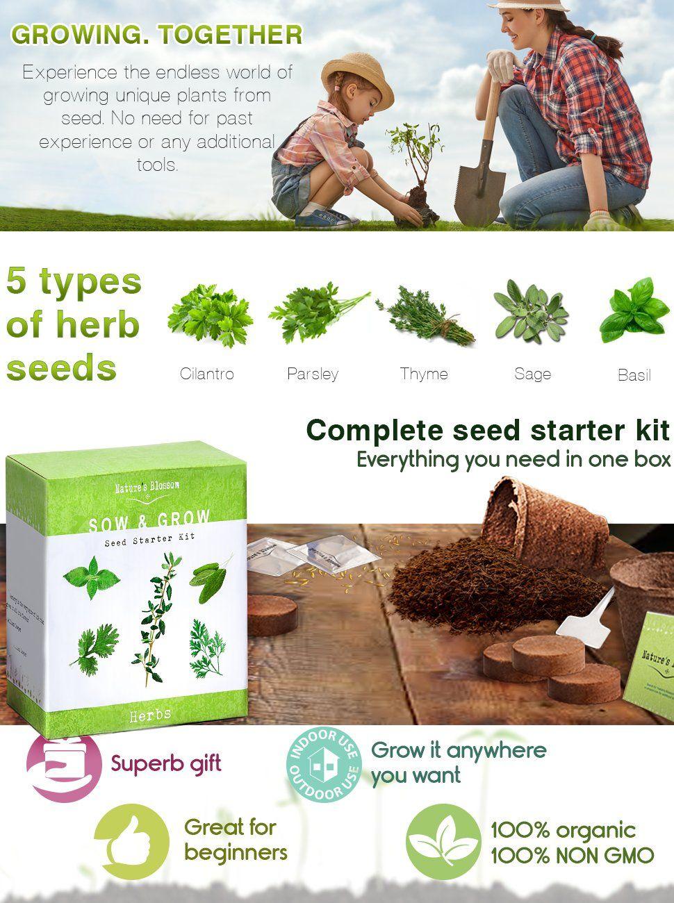 Best Herbs For Shade Herb Garden Kit Seed Starter Kit Tree Seeds