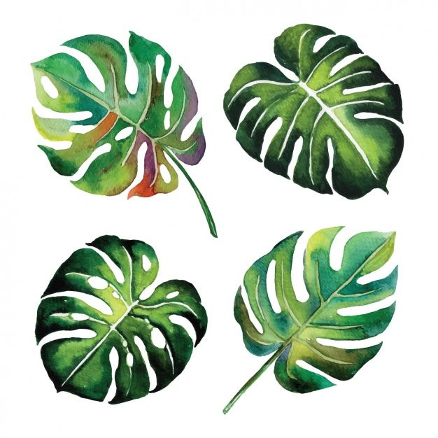 Download Watercolor Leaves Design For Free In 2020 Painted