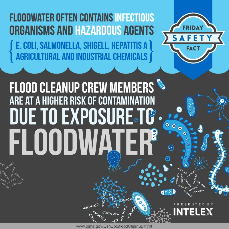 Friday safety fact floodwater contaminants calgary flood