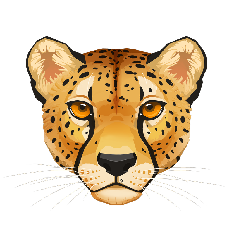 Cheetah Face by Eliket on DeviantArt