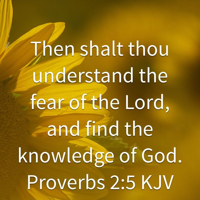 Proverbs 2:5, King James Version (KJV)   Fear of the lord, Proverbs, Kjv