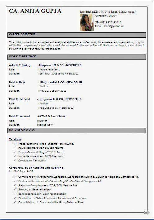 cv kreator Sample Template Example ofExcellent Curriculum Vitae
