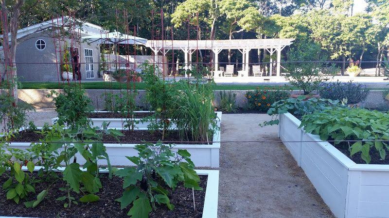 I loved the raised beds in her vegetable garden.   outside ...