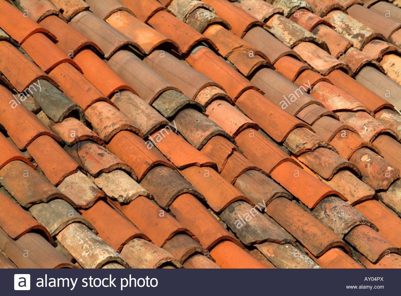 Pin By Elizabeth Mcgovern On Bel Sogno Garden Roof Tiles Italian Courtyard Roof