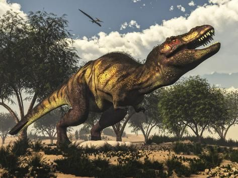 Tyrannosaurus Rex Standing Upon its Eggs to Protect Them Art Print by Stocktrek Images   Art.com