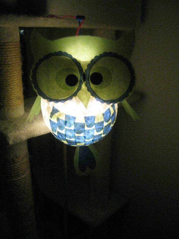 lantern owl Laterne eule