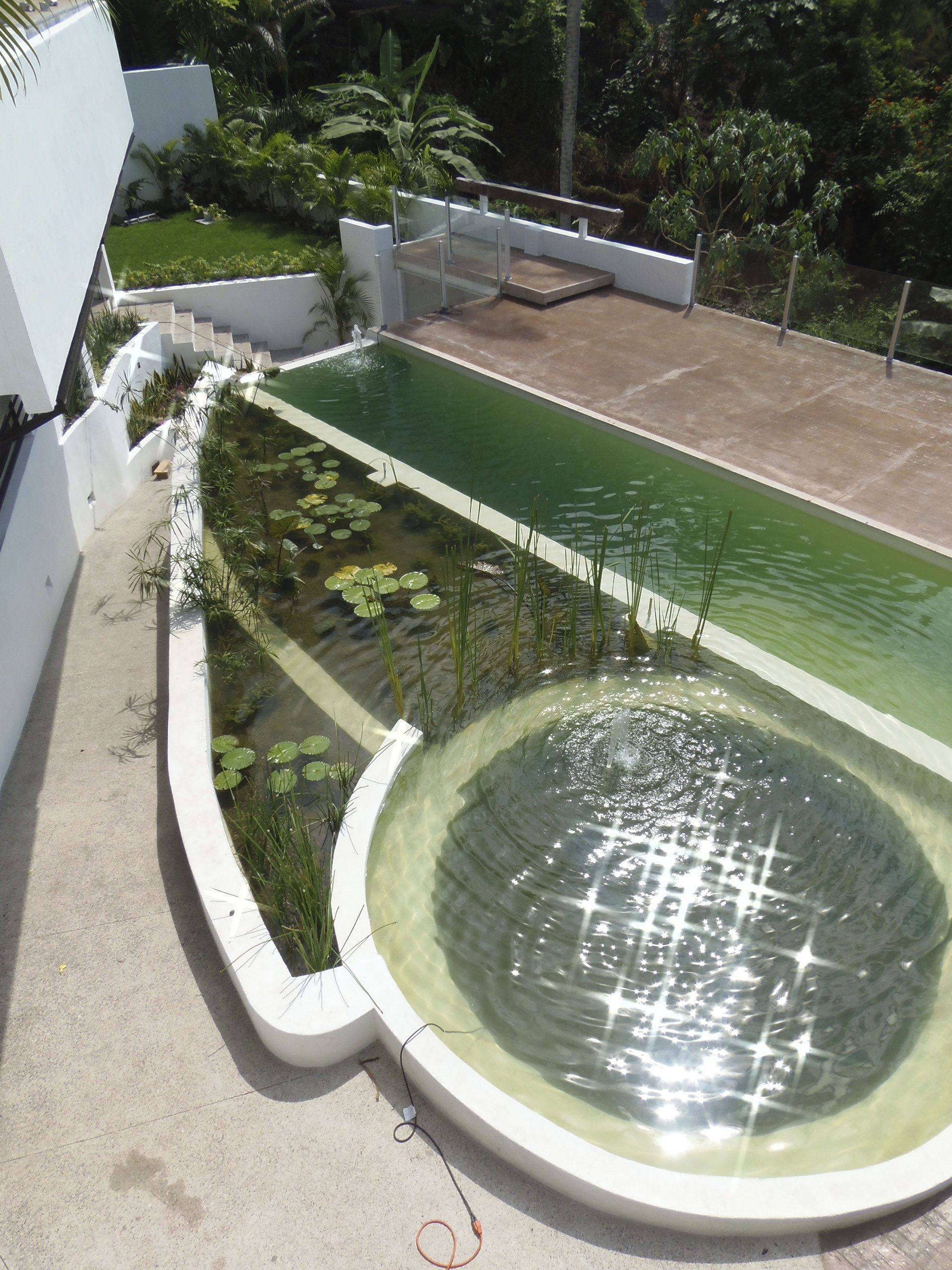 Eco friendly pool designs solar heating and bio filter interior - Nemi Eco Villa In Puerto Vallarta Mexico 40 Foot Natural Swimming Pool Made From A