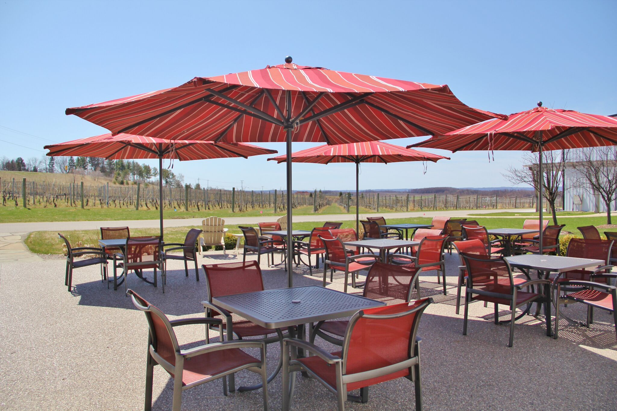 Enjoy A Glass Of Wine In Our Elance Dining Chairs Under A