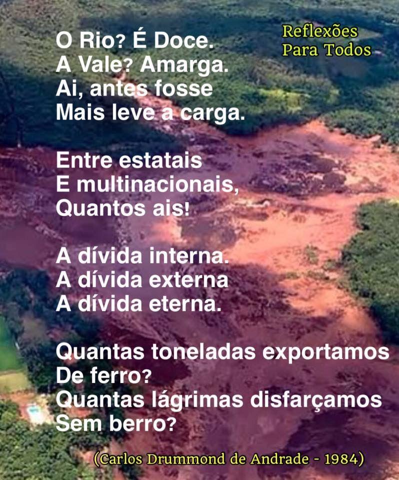 Dia Mundial Do Meio Ambiente Reflexao Frazes Inspiradoras Poemas