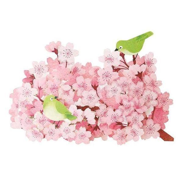 春カード 桜と目白