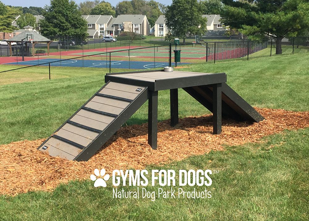 Outdoor Dog Playground Equipment - Buethe.org | Dog ...