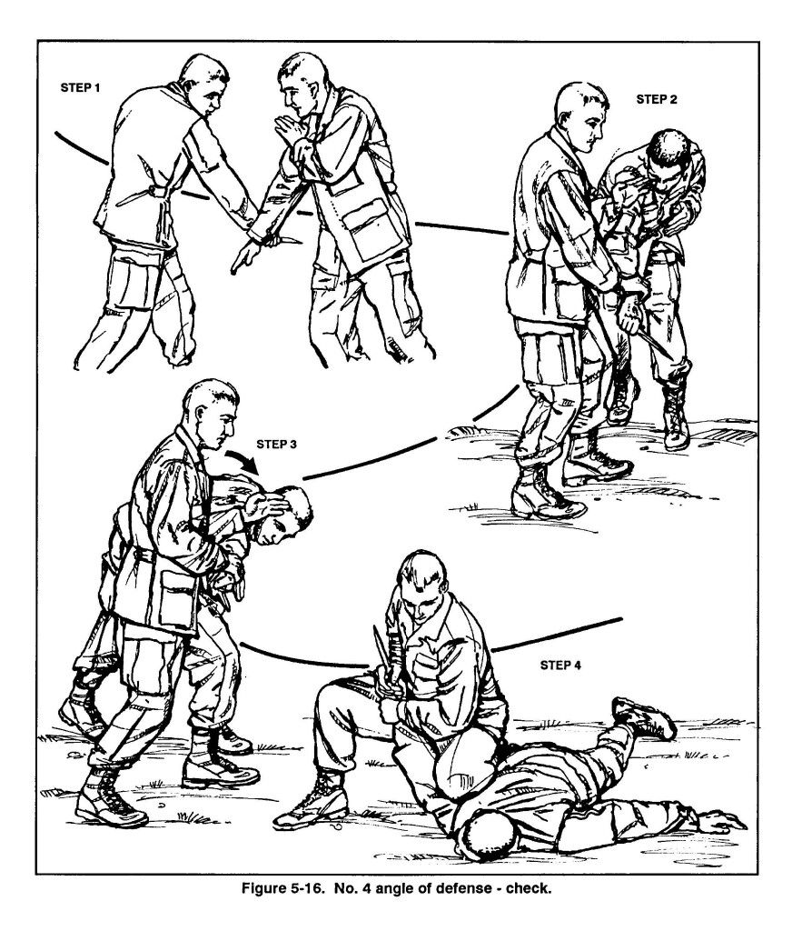 12 Best Fighting Moves images | Marshal arts, Martial art ...