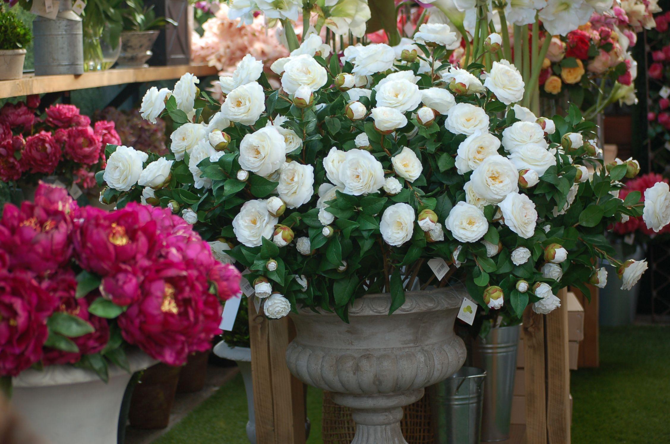 Camelias Blancas Artificiales Arreglos Florales Flores