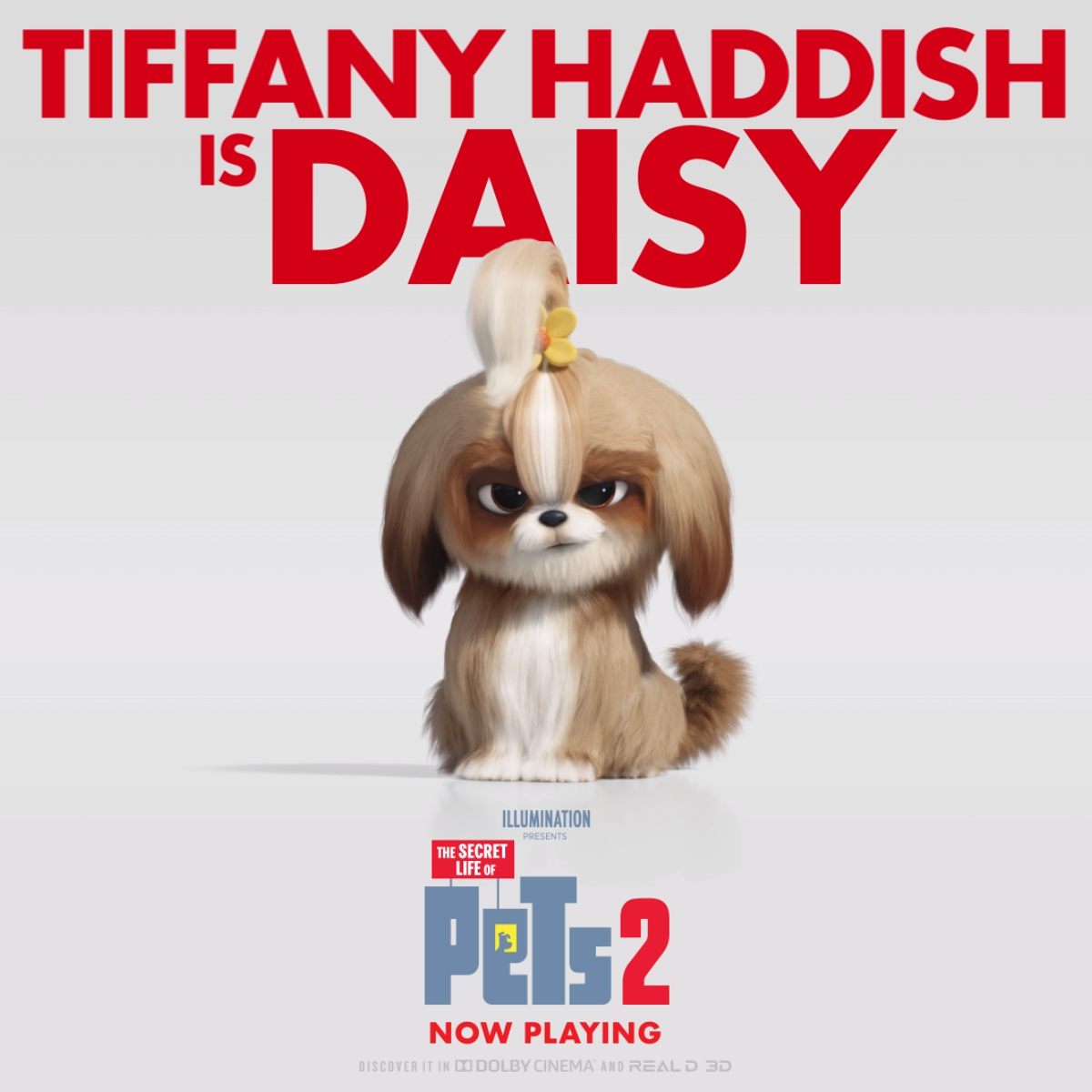 The Secret Life Of Pets 2 Now Playing Video Secret Life Of Pets Pets Cute Animals